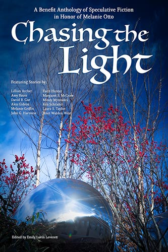 Cover of CXhasing the lights anthology